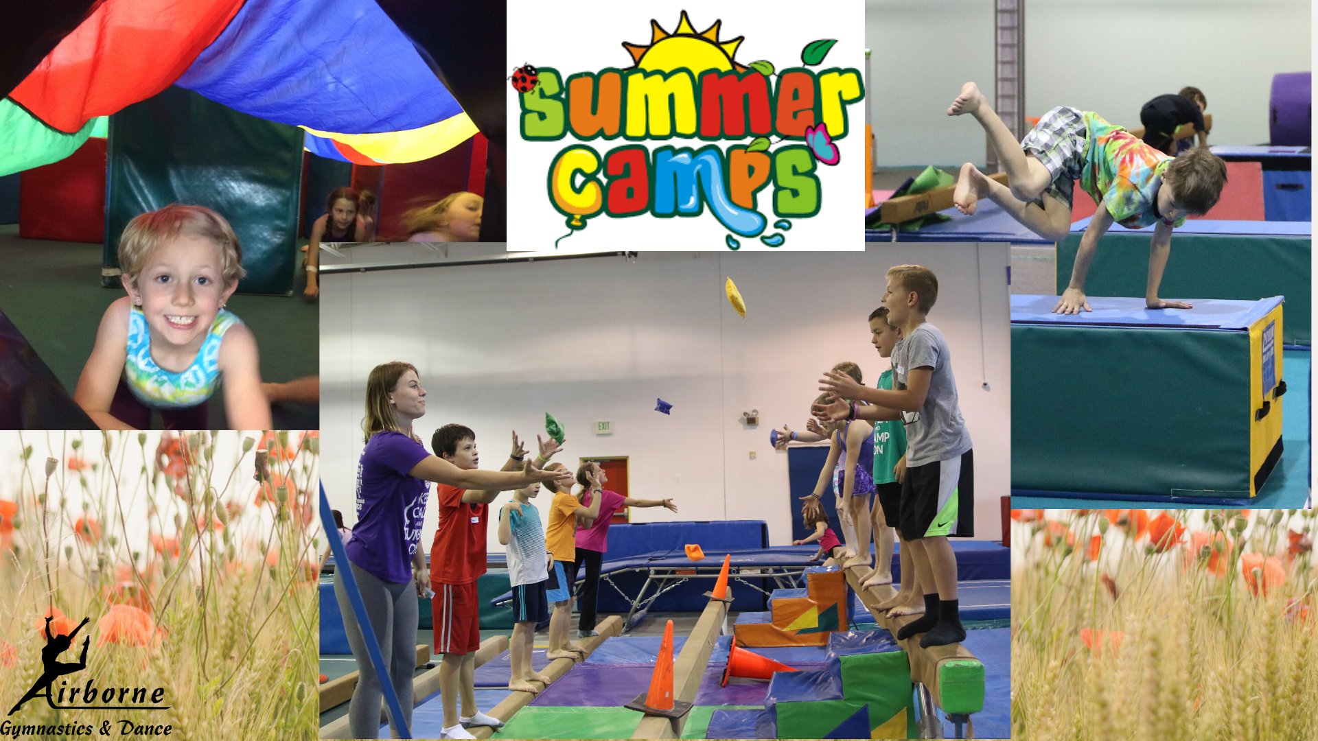 Gym Summer Camps